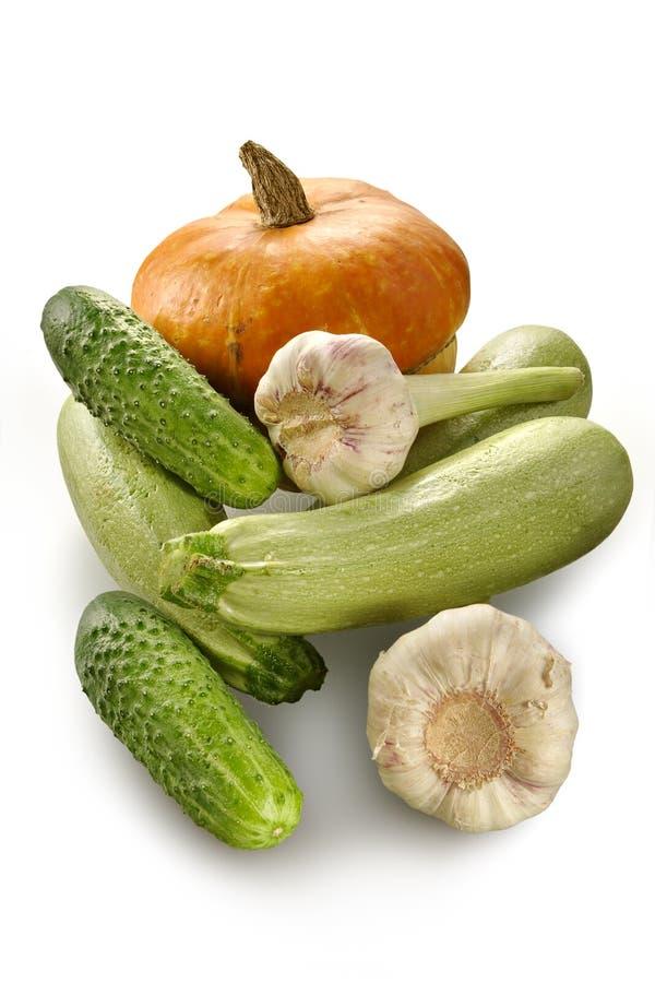 Pumpkin, marrows, cucumbers stock photos