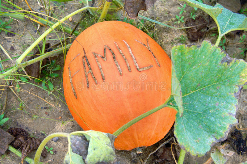 Pumpkin with Message stock photography