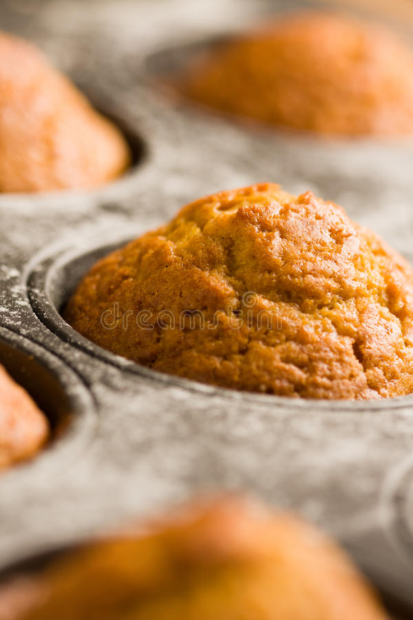 Download Pumpkin muffins stock image. Image of photography, objects - 27112253