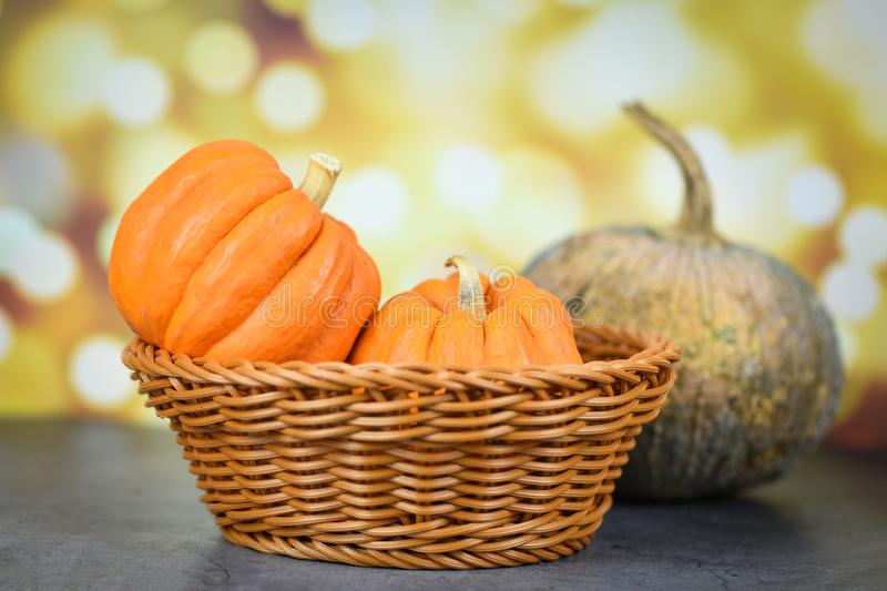Pumpkin na cesta - Festa de Pumpkin no outono, com antecedentes de bokeh fotos de stock royalty free