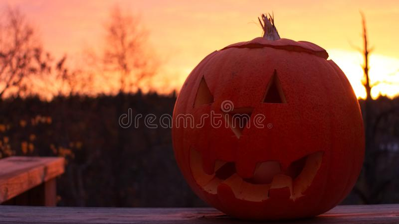 Pumpkin with a nice background royalty free stock photos