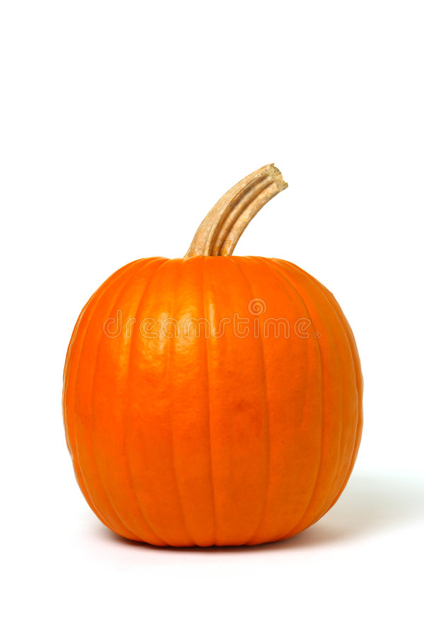Free Pumpkin On White Stock Photos - 1624673