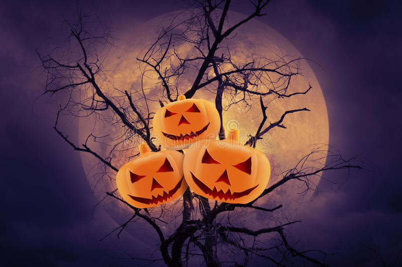 Pumpkin over dead tree against moon, Halloween background royalty free stock photos