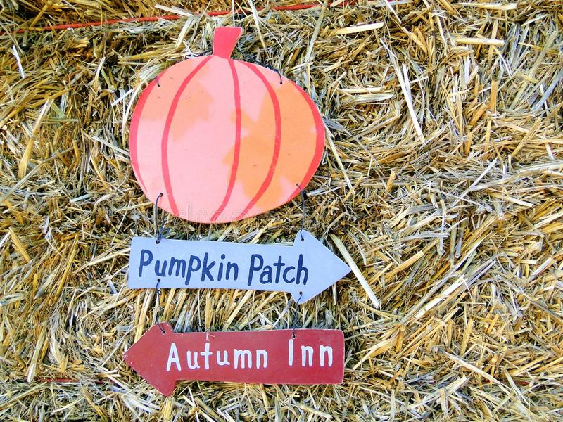 Download Pumpkin Patch Stock Photos - Image: 21702423