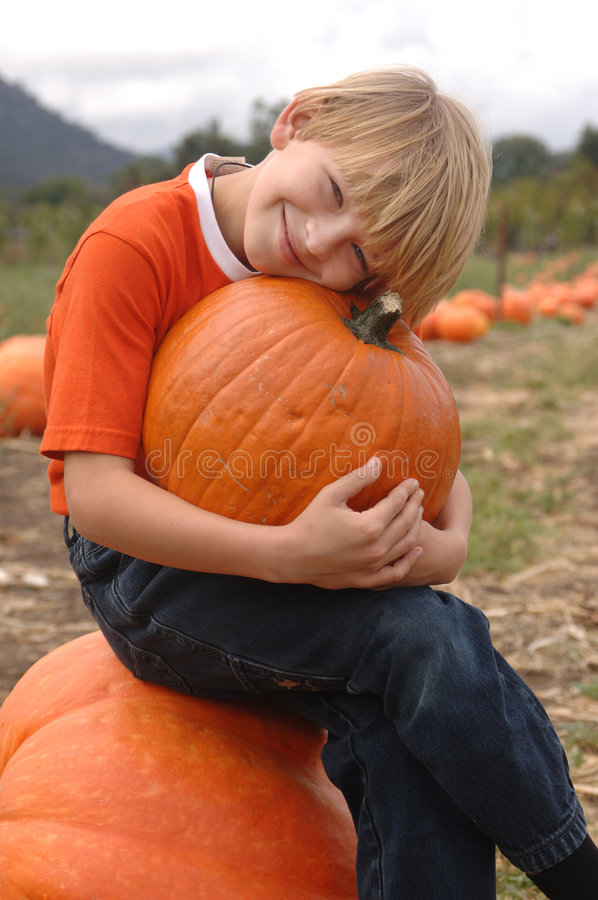 Pumpkin Patch Boy stock photography