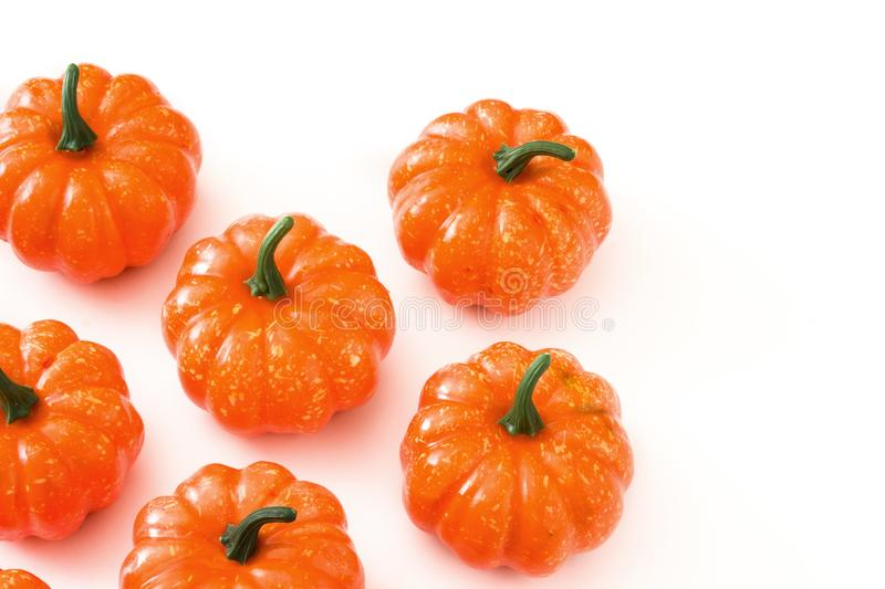 Pumpkin pattern isolated on white background. Copyspace royalty free stock photos