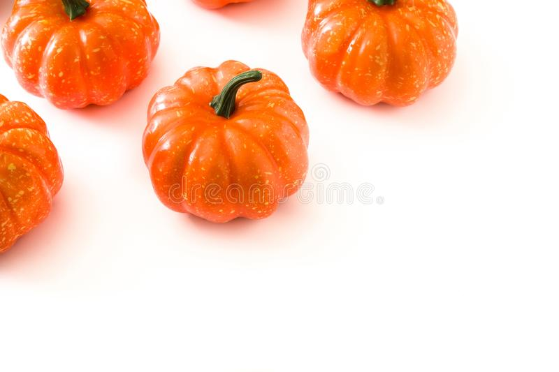 Pumpkin pattern isolated on white background. Copyspace royalty free stock photo