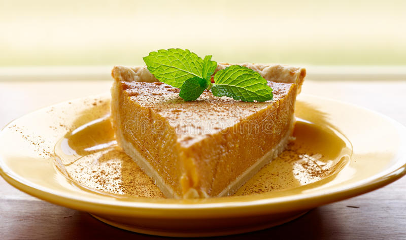 Download Pumpkin Pie With Mint Garnish And Copyspace Stock Image - Image: 22798599