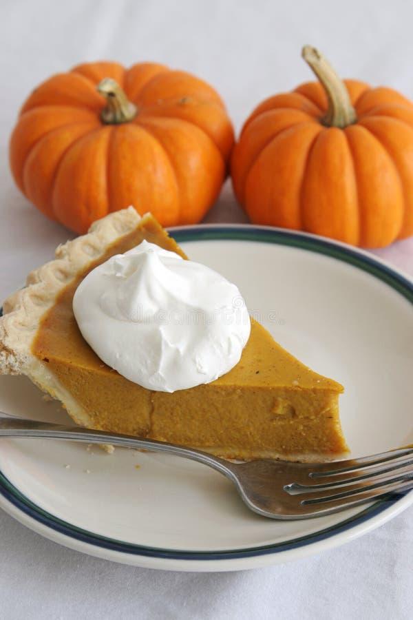 Pumpkin Pie Slice - Vertical royalty free stock photography
