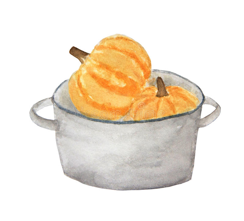 Pumpkin in a pot. royalty free illustration