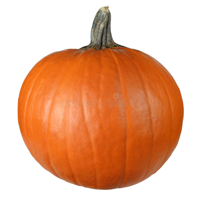 Free Pumpkin Ready To Carve Stock Photography - 12108342