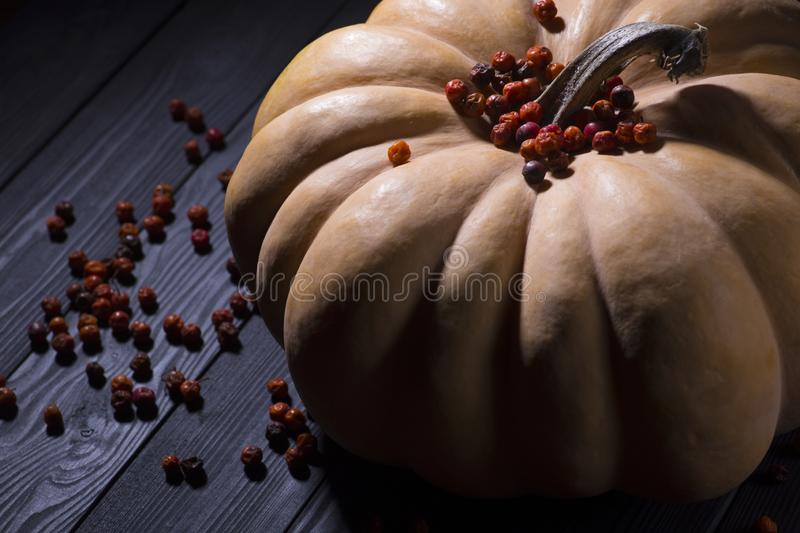 Pumpkin and red berries on a wooden table stock photos