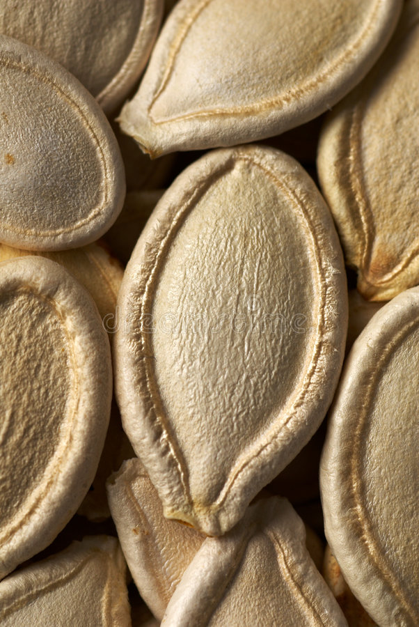 Free Pumpkin Seed Royalty Free Stock Photos - 4558588