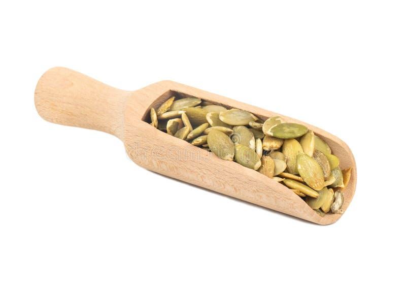 Pumpkin seed kernels in scoop stock photos