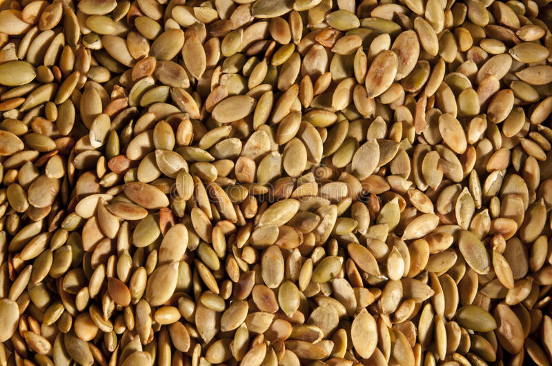 Download Pumpkin seeds stock photo. Image of delicious, dish, grain - 21235874