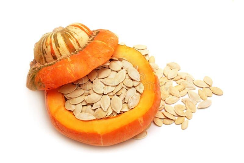 Pumpkin seeds. stock images