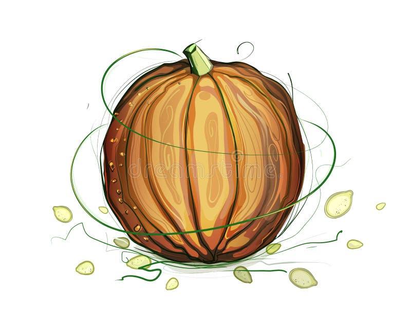 Download Pumpkin And Seeds Illustration Stock Illustration - Image: 26761737
