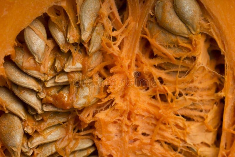 Pumpkin seeds macro . fresh ripe pumpkin and seeds. Food sources of zinc royalty free stock photo
