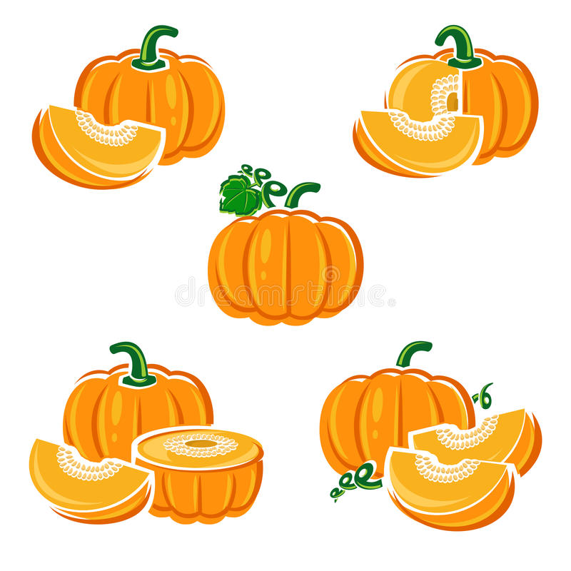 Pumpkin set. Vector vector illustration