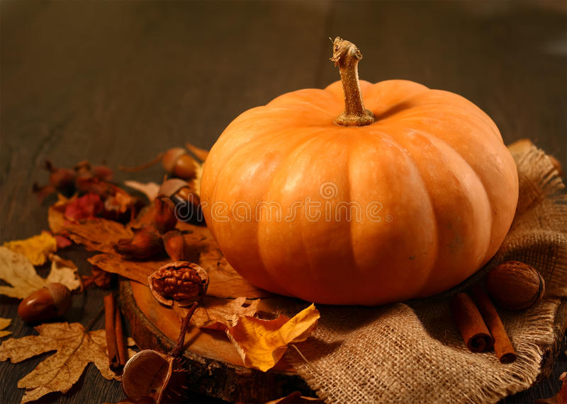 Download Pumpkin Sitting On Fall Leaves Stock Image - Image: 33870857