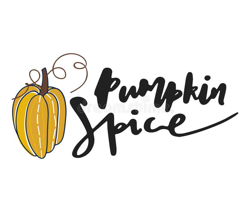 Pumpkin spice . Hand drawn vector illustration. Autumn color poster. Good for scrap booking, posters, greeting cards. Banners, textiles, gifts, shirts, mugs or royalty free illustration