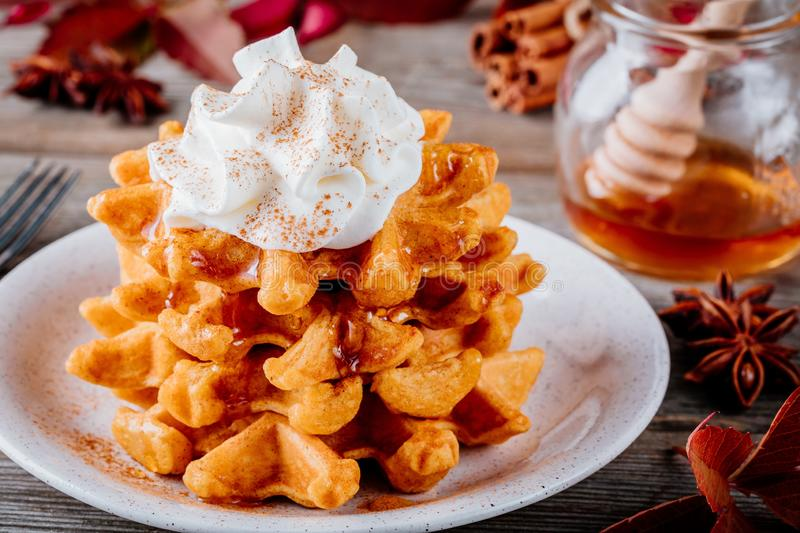 Pumpkin spice waffles with whipped cream for Thanksgiving Day. Pumpkin spice waffles with whipped cream on wooden background for Thanksgiving Day stock photography