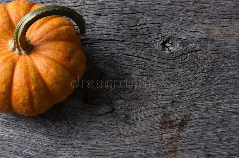 Pumpkin Still Life on Rustic Wood Table stock photo