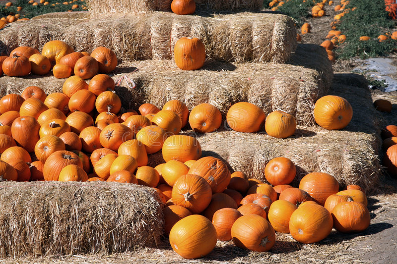 Pumpkin straw bales. Straw bales stacked up with pumpkins in front of them royalty free stock photo