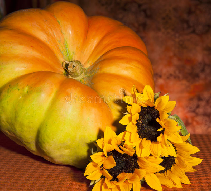 Download Pumpkin and sunflower stock photo. Image of cultivation - 25431410