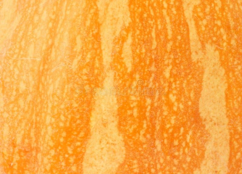 Download Pumpkin Texture Royalty Free Stock Photo - Image: 27588725