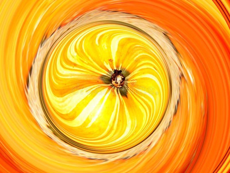 Pumpkin twirl. Pumkin twirl close-up stock illustration