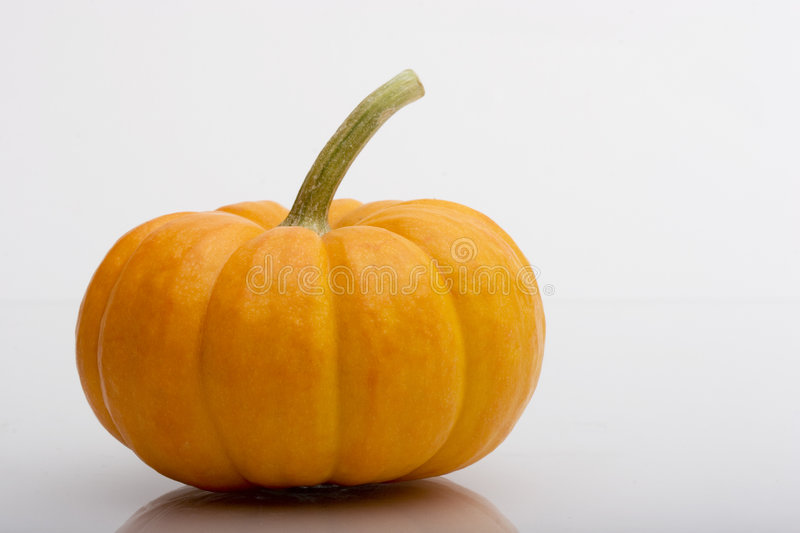 Pumpkin and Two Squash stock photos