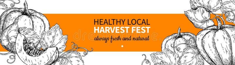 Pumpkin vector banner. Hand drawn vintage Harvest festival frame. Farm Market sketch royalty free illustration