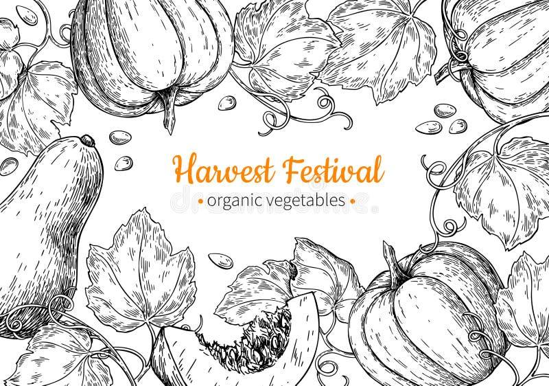 Pumpkin vector frame. Hand drawn vintage Harvest festival illustration. Farm Market sketch vector illustration