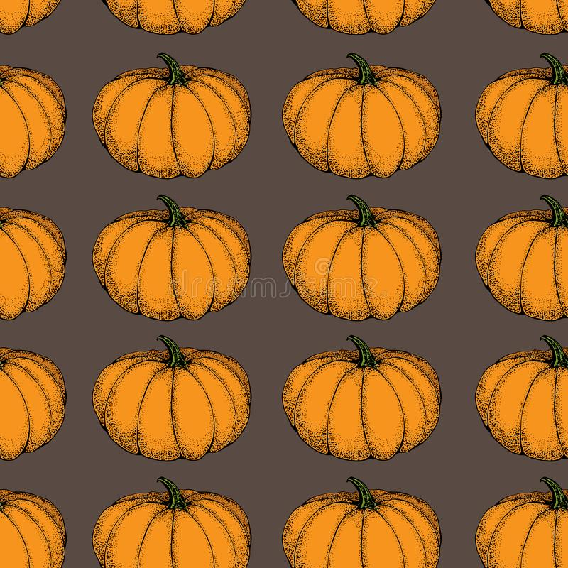 Pumpkin vector seamless pattern. Hand drawn objects isolated on orange. Vegetable cartoon style illustration. Detailed vegetarian. Food sketch background. Farm stock illustration