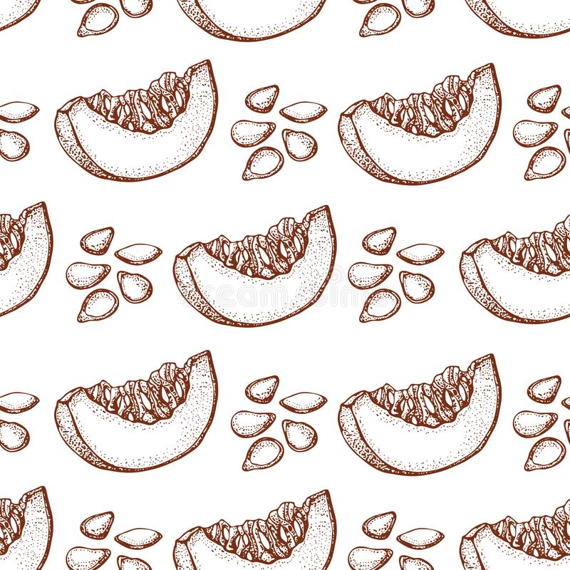 Pumpkin vector seamless pattern. Hand drawn objects with sliced piece of pumpkin and seeds. Vegetable doodle style illustration. Detailed vegetarian food royalty free illustration