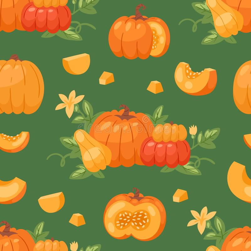 Pumpkin vegetable vector organic healthy autumn food delicious harvest time seasona orange pumpkin cartoon illustration royalty free illustration