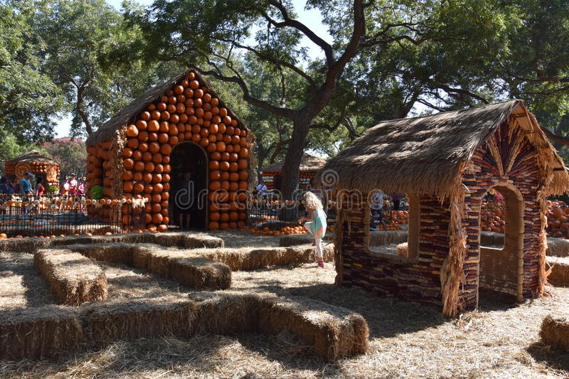 Pumpkin Village at the Dallas Arboretum and Botanical Garden in Texas. (USA royalty free stock photography