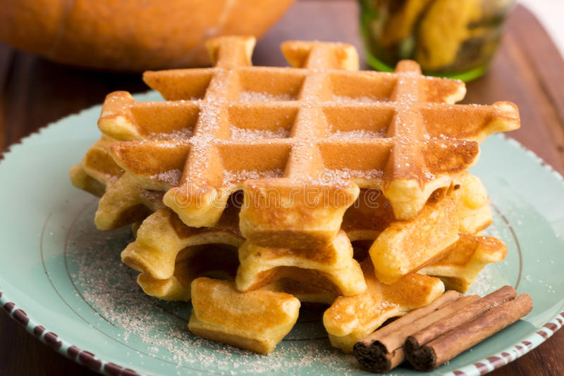 Pumpkin waffles stock image