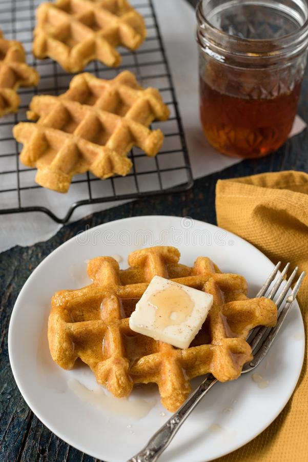 Pumpkin waffles royalty free stock image