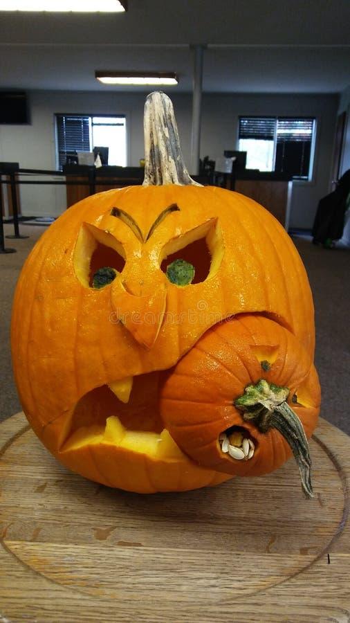Pumpkin-Wettbewerb lizenzfreie stockfotos