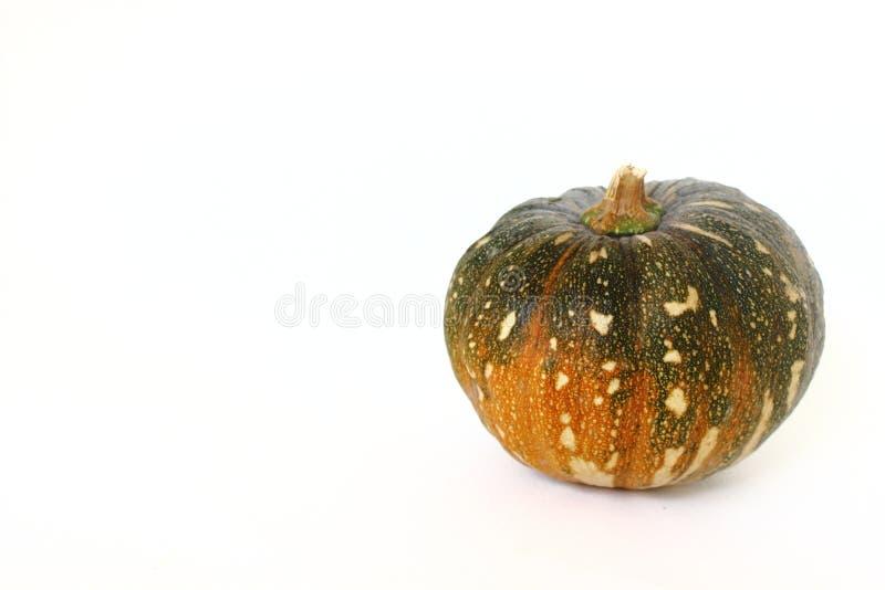 A pumpkin on white background. stock photos