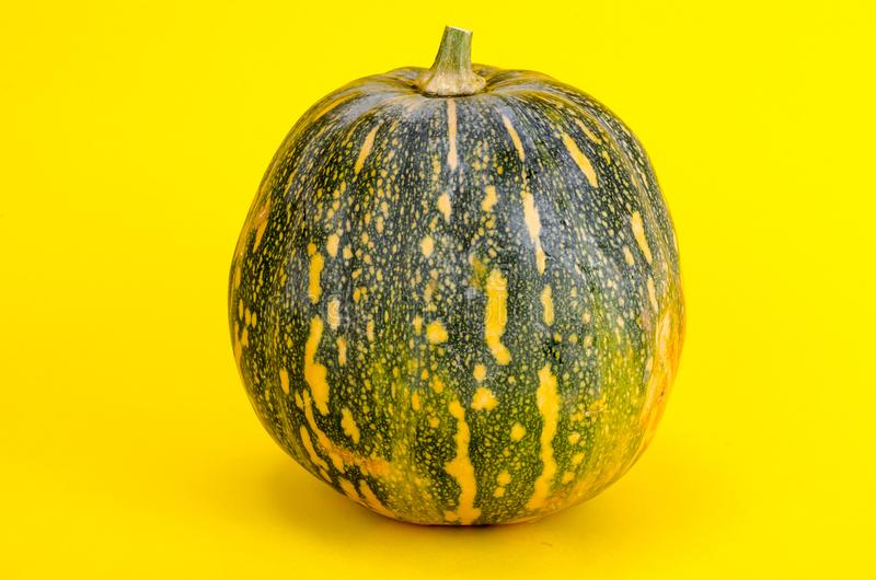 Pumpkin whole round color stock photography