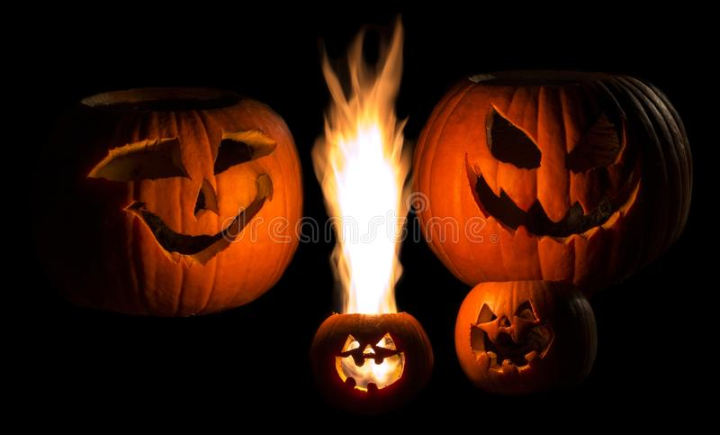 Download PumpkinFamily1 Stock Photography - Image: 35617592