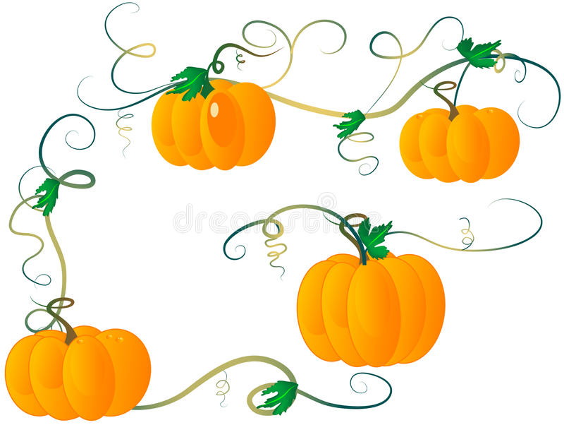 Pumpkins royalty free illustration