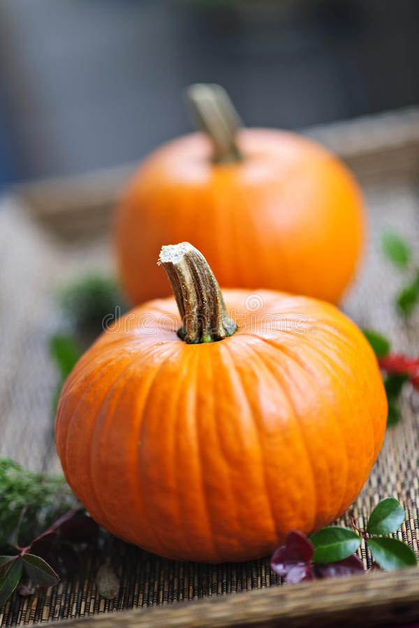 Free Pumpkins Royalty Free Stock Image - 21748876