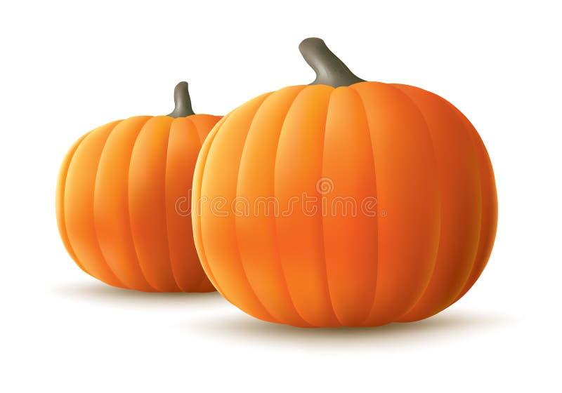 Download Pumpkins stock vector. Illustration of pumpkin, october - 26559341