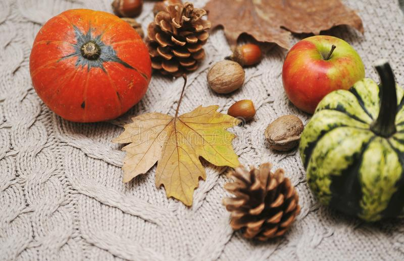 Pumpkins, apples, nuts,leaves, cups and sweater on wooden background. stock photos