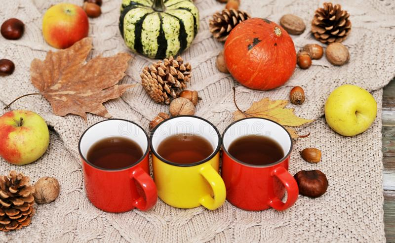 Pumpkins, apples, nuts,leaves, cups and sweater on wooden background. stock image