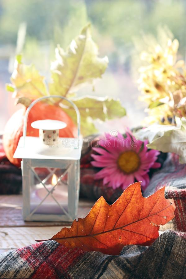 Pumpkins, autumn leaves, decorative lantern with a candle, a flower on a wooden surface on a window background royalty free stock photos